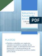 Estructura y función de los plastos