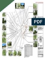 Servey Pokok Model