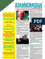Gazeta Hartibaciului August 2013
