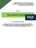 Apuntes del tema bioreactores enzimaticos.pdf