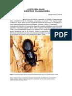 LOS ESCARABAJOS de CHIAPAS (Libro de Biodiversidad en Chiapas, Estudio de Estado- CONABIO)