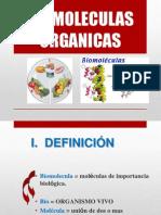 Biomoleculas Organicas Lipidos y Glucidos