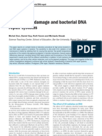 UV Radiation Damage and Bacterial DNA Repair Systems