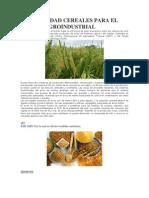 Ormatividad Cereales Para El Sector Agroindustrial