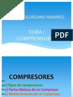 Solorzano Ramirez