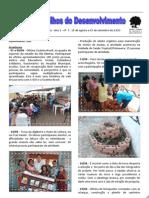 Nos Trilhos do Desenvolvimento - Ano 1 - nº 7