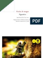 2. Niveles de Imagen