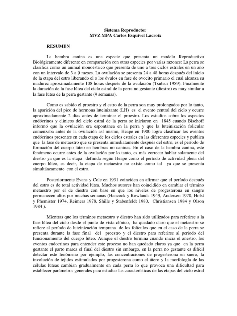 Atractivo Anatomía Genital Canina Molde - Anatomía de Las ...