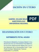 REANIMACIONENUTEROPRESENTACION (1)