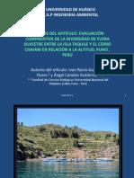Diversidad de Flora Silvestre Entre La Isla Taquile y El Ceroo Chiani Puno