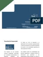Portafolio Sea Doplhins