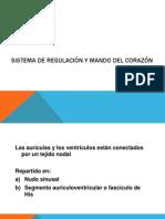 SISTEMA DE EXCITACIÓN ESPECIALIZADO Y DE CONDUCCIÓN DEL
