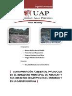 contaminacinambientalenelbotaderomunicipaldeabancay2-120805191508-phpapp02 (1)