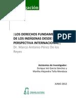Derechos Indigenas Internacional Casos