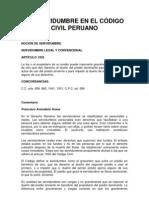 LA SERVIDUMBRE EN EL CÓDIGO CIVIL PERUANO