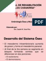 Embrio Osea