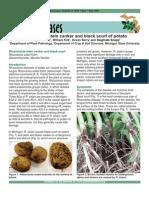 2012 AnnualMeetingSupplement | Plant Pathology | Polymerase