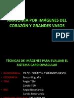 Sem 7 C- 13 Anatomia Del Corazon y Grandes Vasos