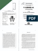 Laboral- Guia de Estudio