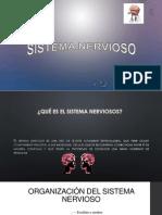 Expo Anatomia