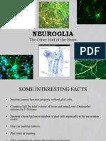 neuroglia.pptx