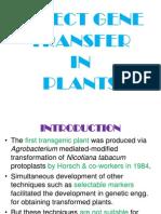 Direct Gene Transfer