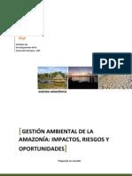 ANALISIS SOBRE Gestión Ambiental AMAZONIA- Reporte