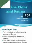 Marine Flora and Fauna.2