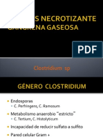 Clostridium 1B.pdf