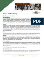About Mink Farming