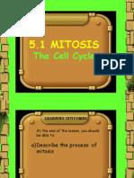Mitosis(Raw)