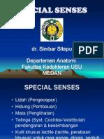 Anatomi Special Senses (Komplit)