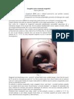 Principiu IRM