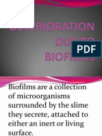 Deterioration Due to Biofilms