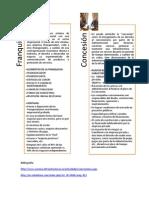 etapas de desarrollo de una empresa, franquicia y concesión
