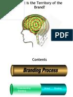 Brand Management Process 1233910218319750 1