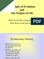 Prinsip Prinsip Evolusi