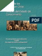 Evolución_Mamiferos_Chile_Parte 1_2012