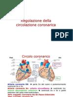 Circolo coronarico 2012