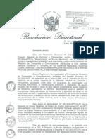 resolucion directoral N°014-2009-MTC