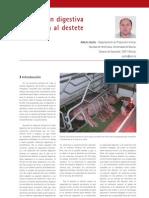 cys_25_48-51 Adaptación digestiva del lechón al destete (I)