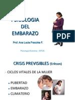 Psicologia Del Embarazo Nuevo