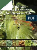 Guía de campo - Briofitas de los bosques templados de Chile