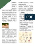 DIAGNOSTICO DE PROTOZOOS SANGUÍNEOS Y TISULARES Y ARTRÓPODOS EN PIEL-1