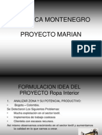 formulacionideadelproyectoropainterior-100428003319-phpapp02.ppt