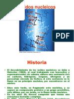 Ácidos_nucleicos