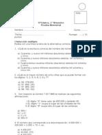 1 prueba bimestral  5ºA