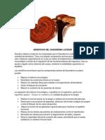 BENEFICIOS DEL GANODERMA LUCIDUM.docx