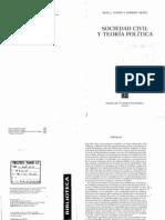 Arato Andrew y Cohen Jean_Los Movimiento Sociales_Sociedad Civil y Teoria Politica_Cap 10