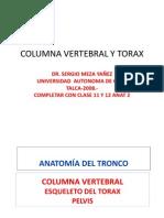 52727537 Clase 6 Columna Vertebral y Torax Pptshare